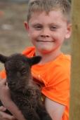 2016 Shearing Shetlands 123